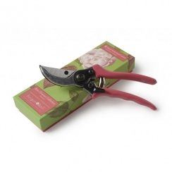 Burgon & Ball Secateurs - Rosa Chinensis