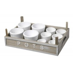 Wooden Tray with White Plant Pots